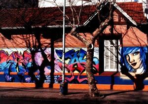 grafitti 09 Salta y Bolivar, MdP x RSA